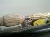 Kugelschreiberrohling
